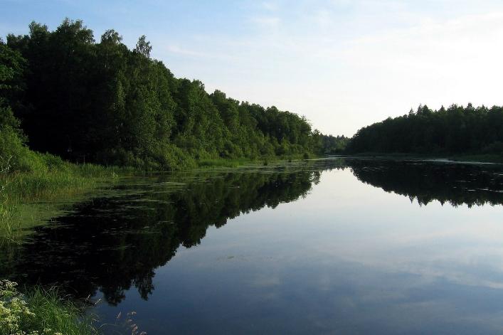 La Pologne a enfreint la législation européenne sur la protection des sites naturels en ordonnant des abattages dans la forêt de Bialowieza, l'une des dernières forêts primaires d'Europe, a estimé mardi l'avocat général de la Cour de justice de l'Union européenne.