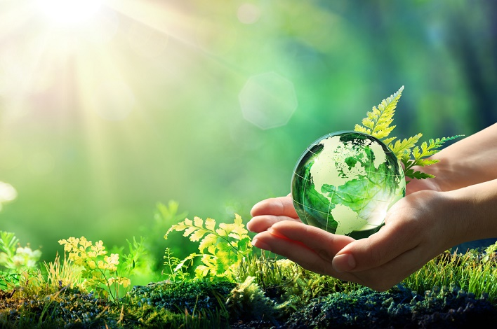 [Science] Restaurer un tiers des zones dégradées, solution la plus efficace pour préserver le climat et la biodiversité