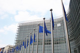 European Commission CCO