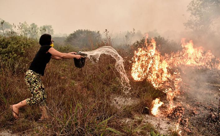 Une villageoise tente d'éteindre un feu dans une tourbière à l'extérieur de la ville de Palangkarava en Indonésie le 26 octobre dernier AFP PHOTO Bay ISMOYO