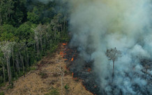 Deforestation amazonie double en un an Greenpeace