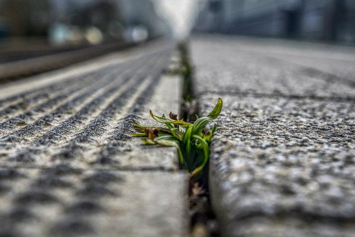 Artificialisation des sols betons