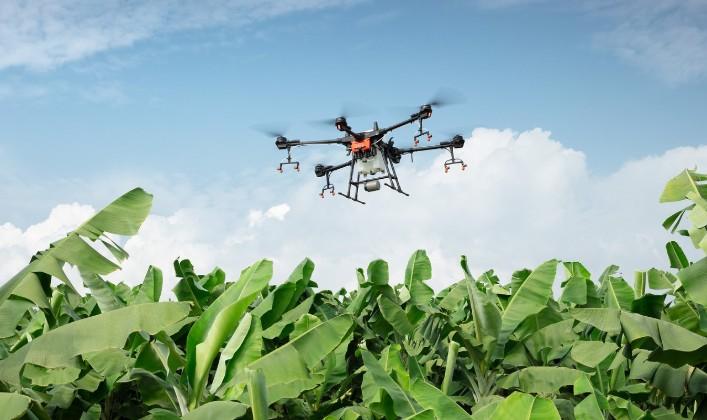 Le black-out qui a mis fin à l'agriculture numérique 2050 En-2050-un-blackout-met-fin-a-l-agriculture-du-tout-numerique