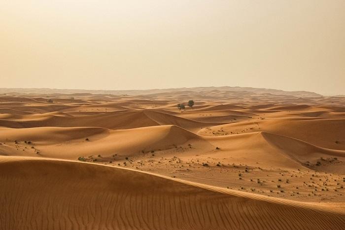 Afrique: L'avancée du désert du Sahara en 100 ans est inquiétante